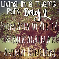 living-in-a-theme-park-day-2-from-asia-to-africa-and-back-again-at-animal-kingdom
