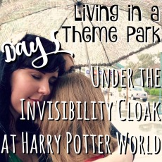living-in-a-theme-park-day-5-under-the-invisibility-cloak-at-harry-potter-world